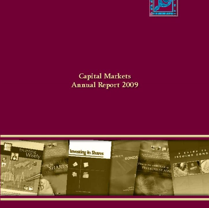 thumbnail of Capital Markets Annual Report 2009
